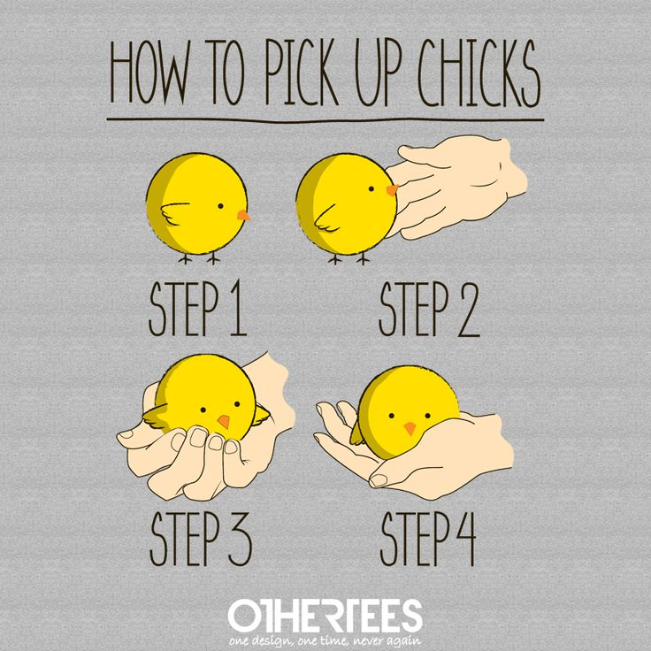 """How to pick up chicks"" by PolySciGuy Shirt, Sweatshirt, Hoodie and Tank Top on sale until 20 July on othertees.com Pin it for a chance at a FREE TEE!"
