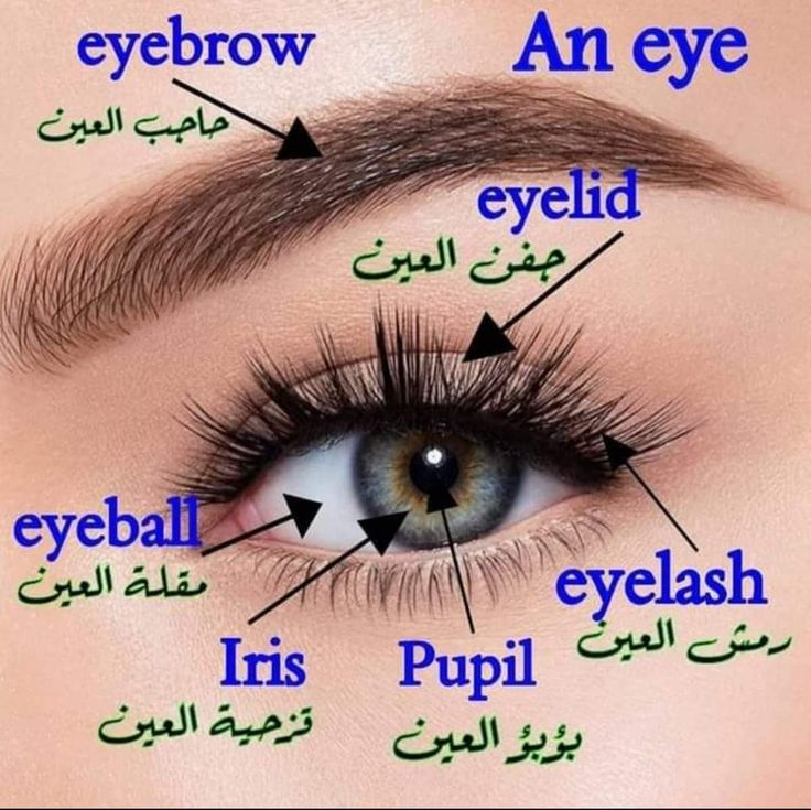 Learning Arabic Msa Fabienne Learning Arabic Learn English English Language Learning Grammar