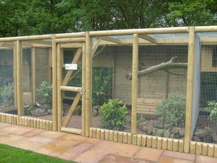 25 best ideas about bird aviary on pinterest pet bird for Chicken enclosure ideas