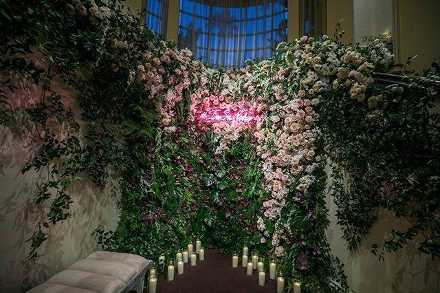 Light Pink Carpet