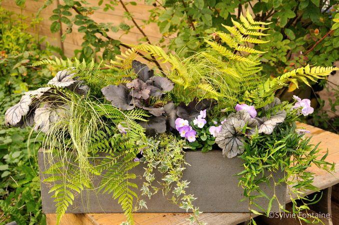 Jardini re d 39 automne extrait du cd livre num rique fleurs for Jardiniere d hiver
