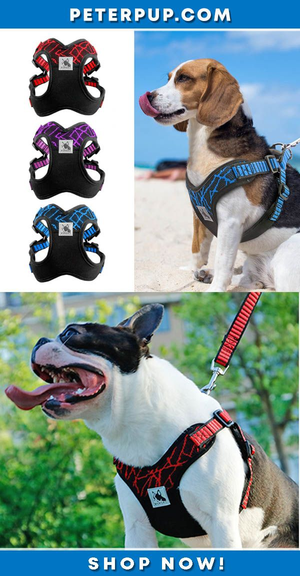 No Pull Sport Reflective Dog Harness For Medium Large Dogs Pitbull