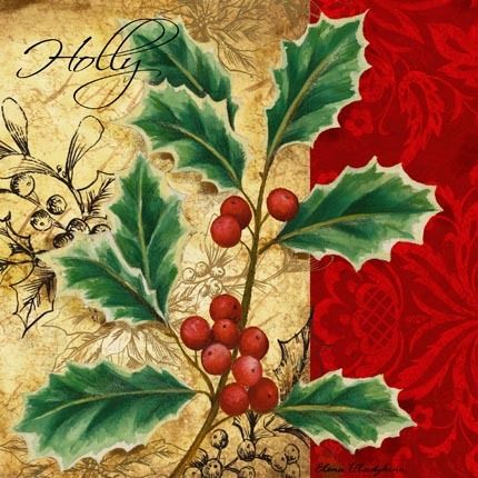 Holiday Holly by Elena Vladykina