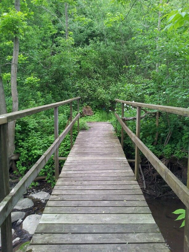 Take a hike at Darlington Provincial Park!!