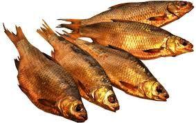 Холодное копчение рыбы и мяса. Коптильня. 18+
