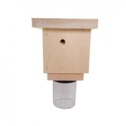 carpenter bee traps. these bees are a terrible nuisance!
