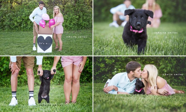 Warrensburg Missouri couple Kennedy Sartwell and Jake Terry recently adopted a new puppy named Raven. In order to announce Raven to family and friends, they had a gender-reveal photo shoot.