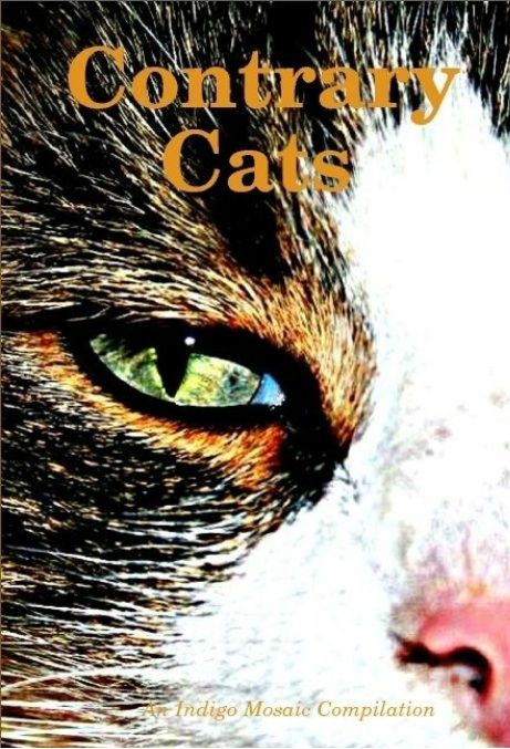 My horror short story, Pretty Kitty, was published in Contrary Cats anthology