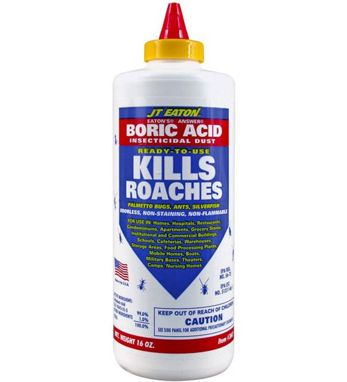 Boric Acid - as safe to humans as table salt! Nature's proven insecticide..! JT Eaton's Boric Acid is a ready-to-use insecticidal powder used to kill cockroaches, palmetto bugs, ants, silverfish, fleas and more.