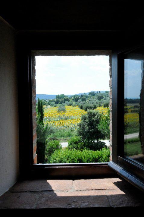 Sunflowers by the window of La Fattoria del Rio di Sopra. Agriturismo in Umbria