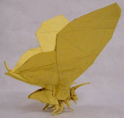 Peter Engel- Origami Butterfly, I like how he has taken making and origami butterfly to the next level, and has gone into an incredible amount of detail into the actual body of the butterfly, rather than just making the shape of a butterfly.