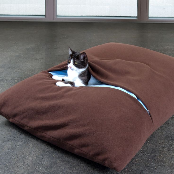 57 best studio snorhaar concurrentie images on pinterest dog beds doggies and bedding. Black Bedroom Furniture Sets. Home Design Ideas