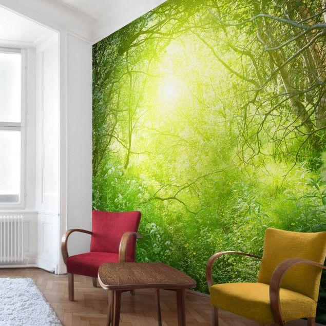 Selbstklebende Tapete Vlies : Waldtapete – Vliestapete Premium – Traumzauberwald – Fototapete Wald