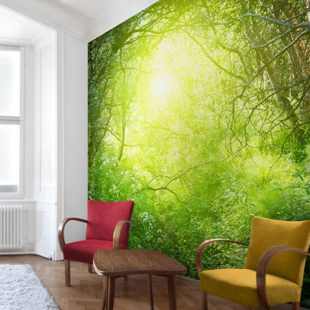 25 best ideas about fototapete wald on pinterest wald. Black Bedroom Furniture Sets. Home Design Ideas