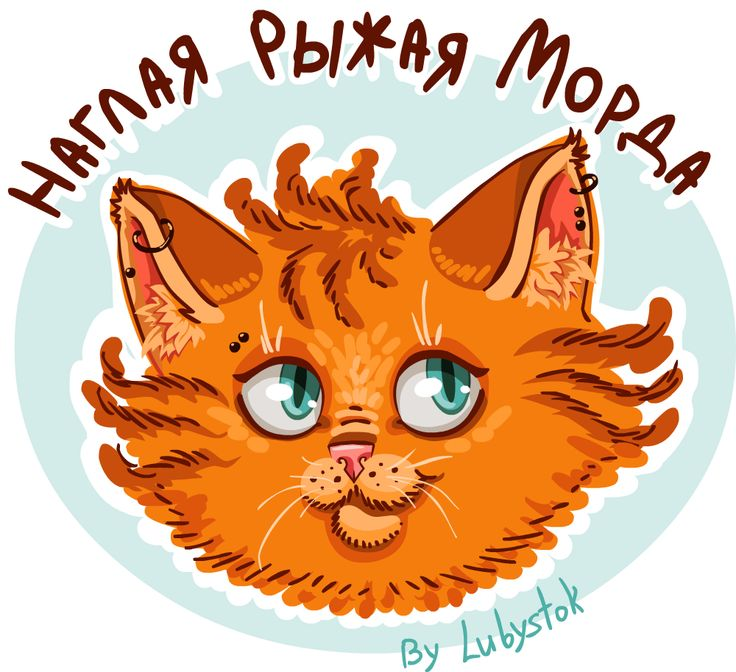 Котейка