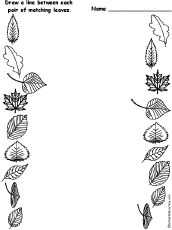 tons of great tree and leaf work sheets!!!! Leaf Matching