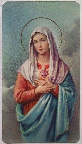 http://www.proecclesiacatolica.cz/img/mid/1580/neposkvrnene-srdce-panny-marie-c.-3.jpg