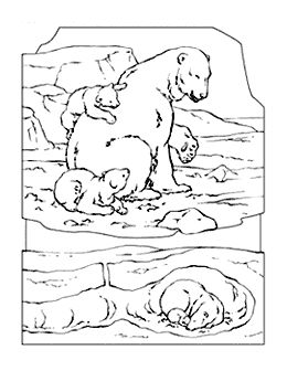 google polar bear coloring pages - photo#23
