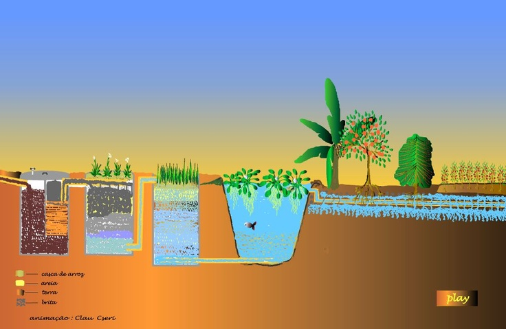 Projeto Plante Uma Árvore: SISTEMAS ALTERNATIVOS DE TRATAMENTO DE ESGOTO DOMÉSTICO