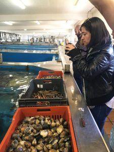 Bahia de Aldán. Alquiler velero Pontevedra   El Bahía de Aldán: punto de encuentro de bloggers, mar y gastronomía en su primer sailingtrip