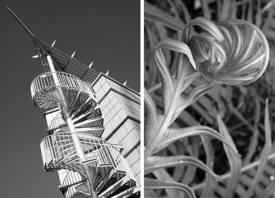 Nature architecture google architecture pinterest for Architecture nature