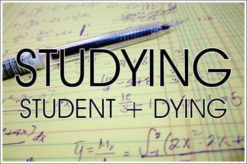 Funny Quotes about Exams Stress