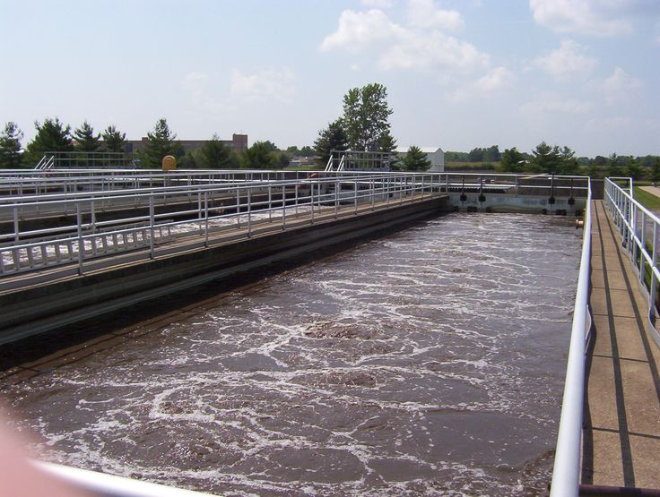 Waste water harnessed to make electricity and plastics