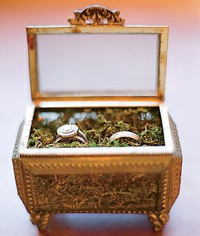 Wedding rings presented in a decorative glass box lined with moss / Photo: Elizabeth Messina