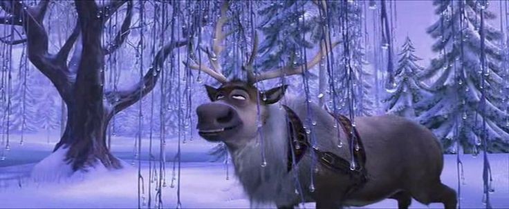 When Sven found some grass, even in winter.