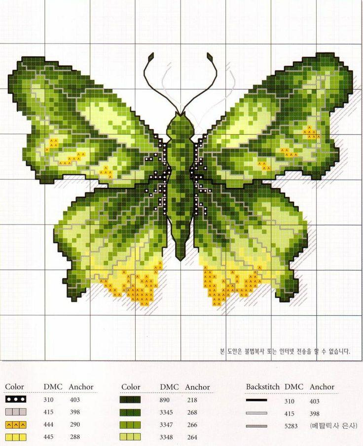 Papillon Vert & Jaune