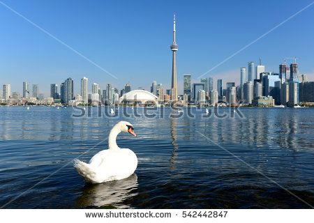 Beautiful Toronto skyline in a sunny day.