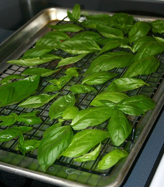 Seven Alive: Dry your own herbs. -Tried this last night, works great with open work pizza pans also. Be prepared for your house to smell strongly of basil unless you open up the doors.