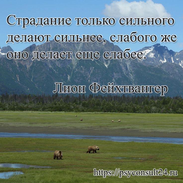 Консультация психолога на сайте https://psyconsult24.ru #консультация #психологи #психология