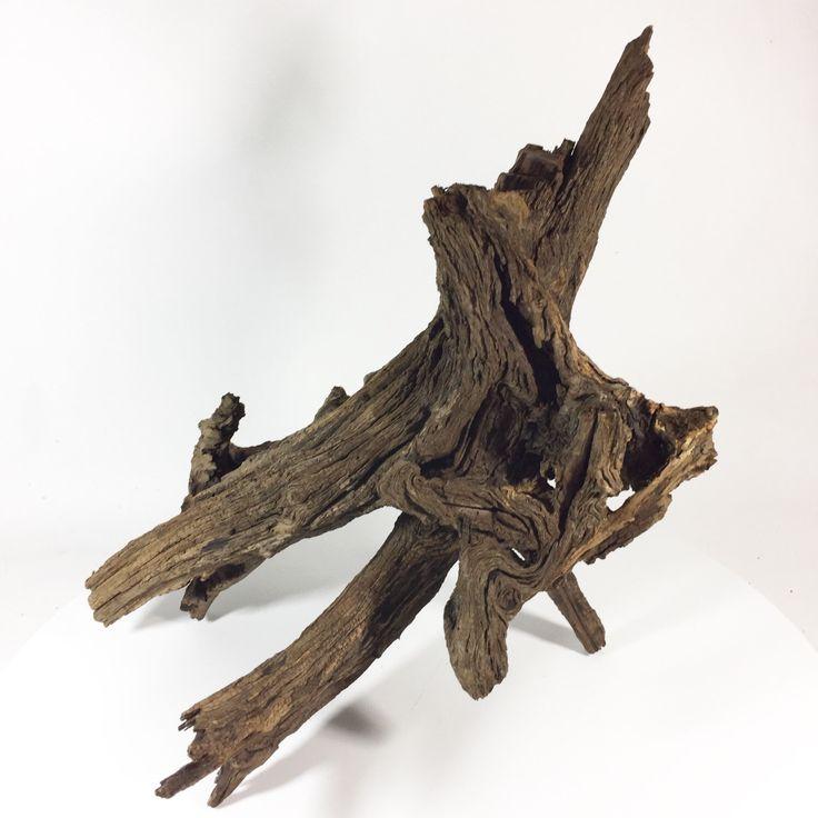 "17""Hx17""W Large Sinking Oak Driftwood for Aquarium Terrarium Vivarium Holes by Suwanneeriverco on Etsy https://www.etsy.com/listing/498265219/17hx17w-large-sinking-oak-driftwood-for"