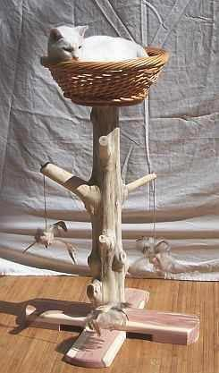 Best 25 Cat Scratch Furniture Ideas On Pinterest Cat