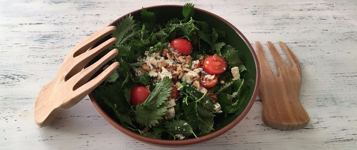 Rokfor Peynirli Isırgan Otu Salatası