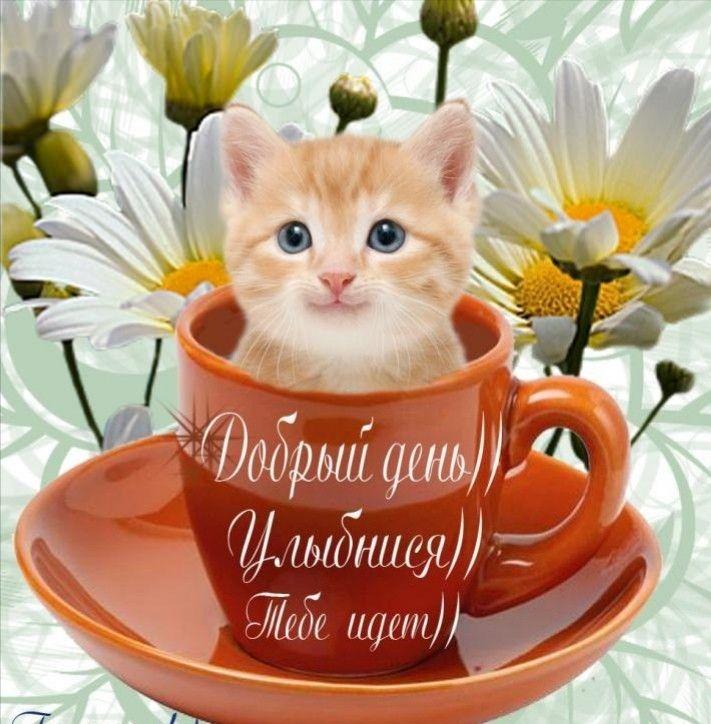 С добрым утром родная открытка, сказочная спокойной