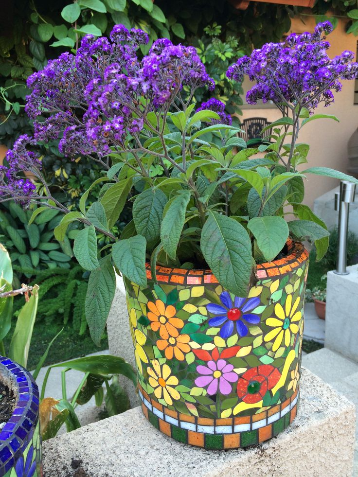 17 Best 1000 images about Garden Mosaics on Pinterest Mosaics The