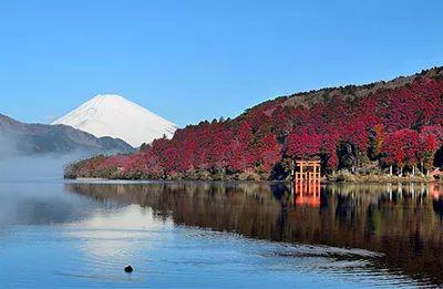 箱根の紅葉2016 見頃時期