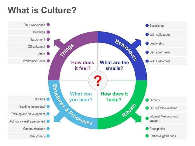 zappos leadership and organizational culture Assignment 4: leadership style: the culture of zappos consists of ten values linking leadership style, organizational culture.