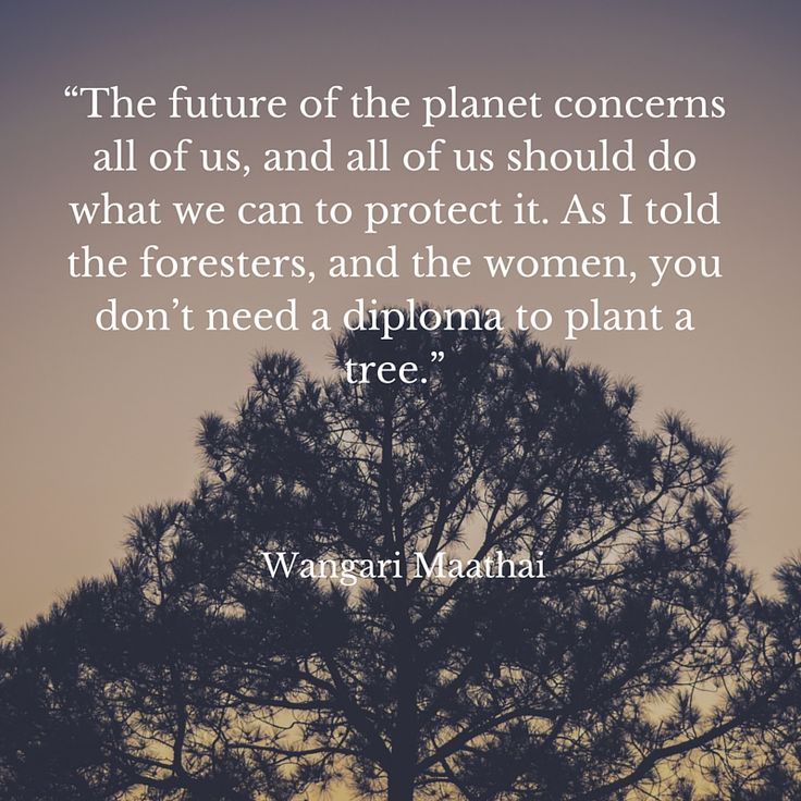 Foresters Quick Quote 15 Best Quotes I Like Images On Pinterest  Words Favorite Quotes .