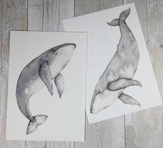 These two humpback whale prints work beautifully together and bought together as…