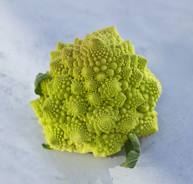 Romanesco - the most beautiful vegetable on earth!
