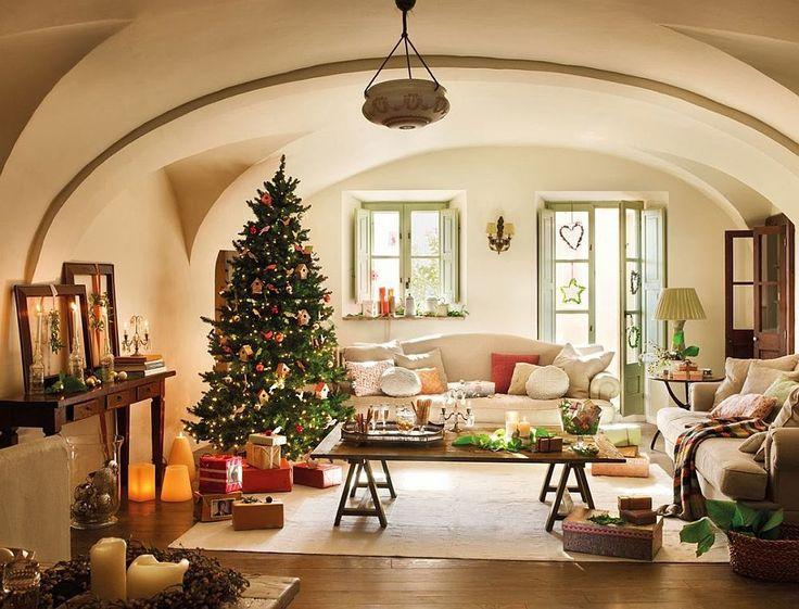 Cum trebuie îngrijit un brad de Crăciun la ghiveci?