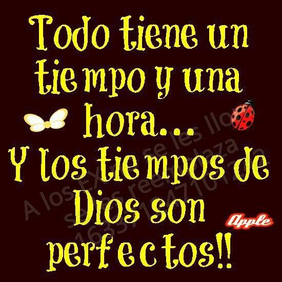 Todo tiene un tiempo y una hora... y los tiempos de Dios son perfectos!