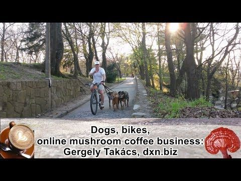 dxnproducts.com: Apartment-dog dad and coffee MLM business hated by...