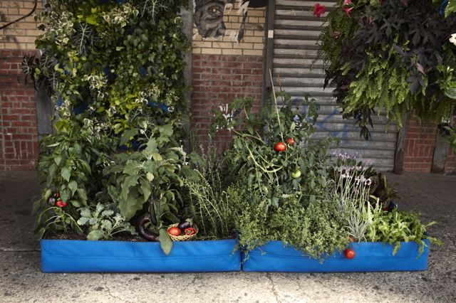 Ten Ways to Occupy Your Garden via HuffPost: Gardens Growing Stuff, Aspir Gardens, Urban Farms, Green, Urban Agriculture, Urban Gardens, Gardens Retreat, Fabrics Planters, Recycled Plastic Bottle
