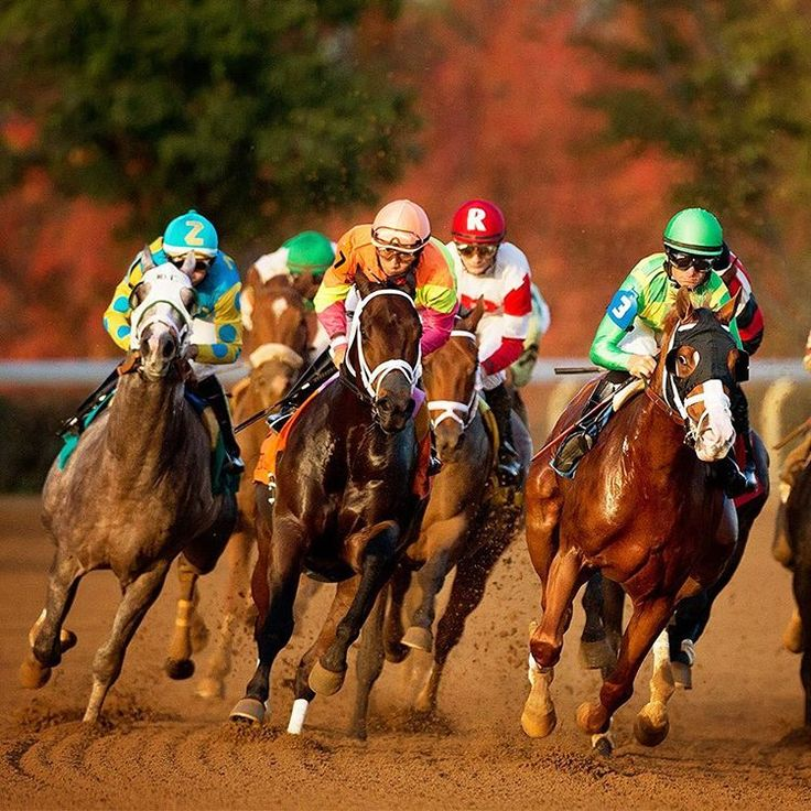 A vision that originated 80 years ago continues this Fall, as the tradition of Keeneland racing returns October 7.  Tickets available online beginning Monday, Aug. 1 at 8:30 a.m. at tickets.keeneland.com. . . #Keeneland #ILoveKeeneland #sharethelex