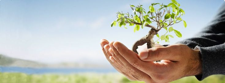 Best Insurance Companies | Comprehensive Insurance Website
