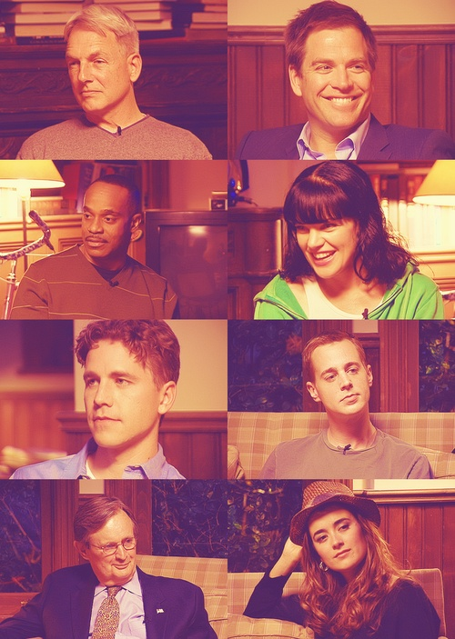 Mark Harmon, Michael Weatherly, Rocky Carroll, Pauley Perrette, Brian Dietzen, Sean Murray, David McCallum, & Cote de Pablo